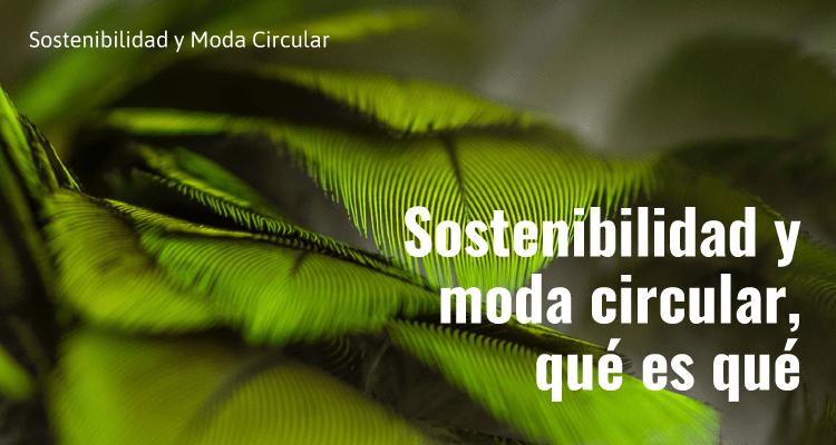 Sostenibilidad y moda circular