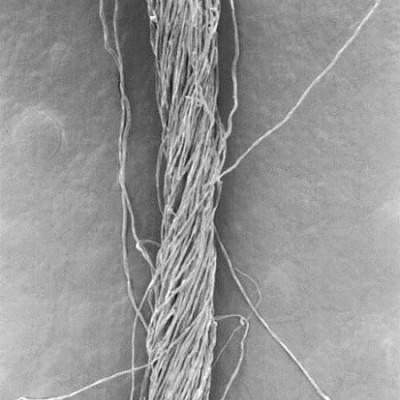 Torsión y retorsión de los hilos en seampedia