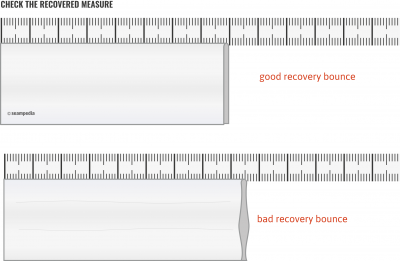 Elasticity percentage of a fabric good recovery bounce