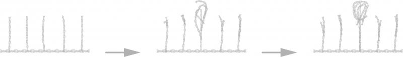 Formacion del pilling en seampedia.com